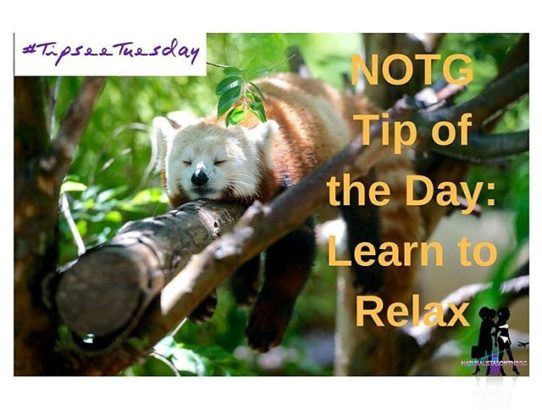 NOTG tip of the day: Learn to relax!!