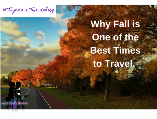 NOTG Tip-See Tuesday: Why Fall is One of the Best Times to Travel