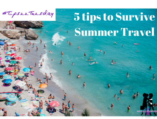 5 Tips to Survive Summer Travel